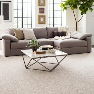 Living room Carpet flooring | Assured Flooring