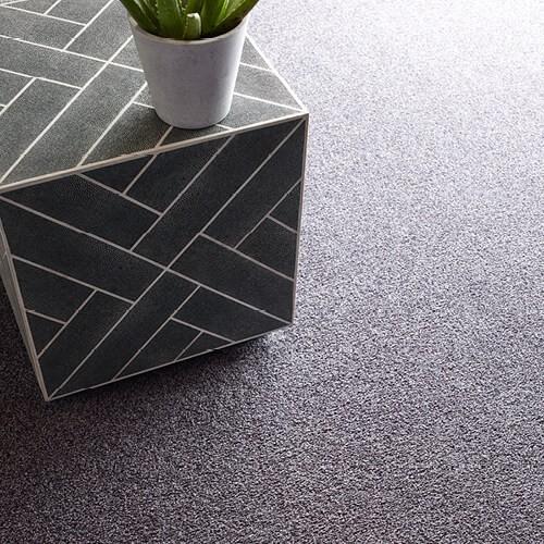 Carpet flooring | Assured Flooring