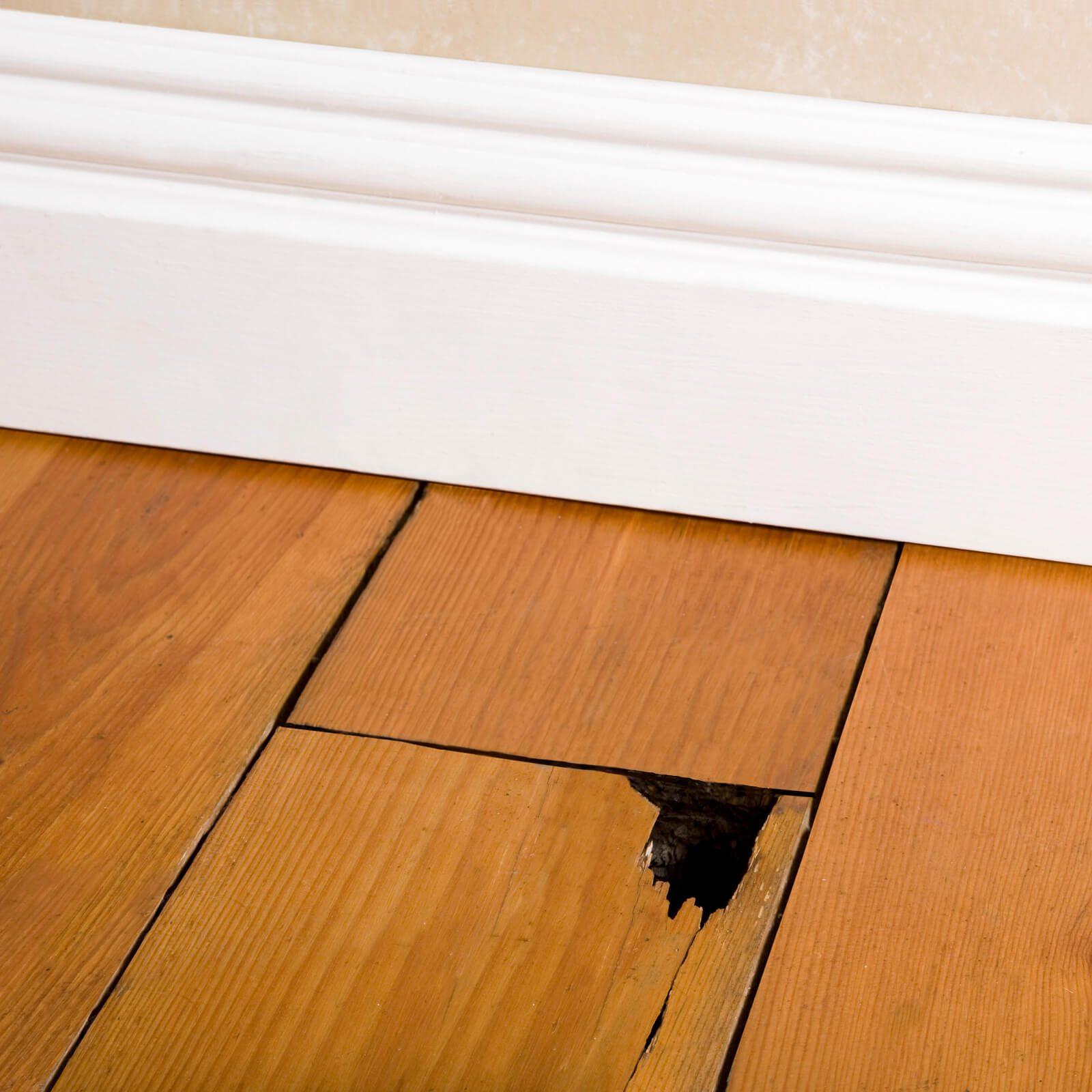 Hardwood repair | Assured Flooring